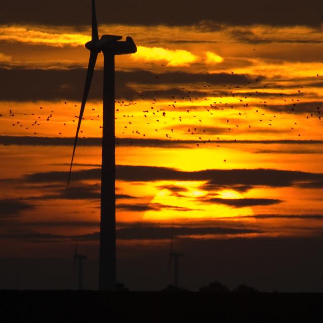 """Sunset, Zonsondergang"" stock image"