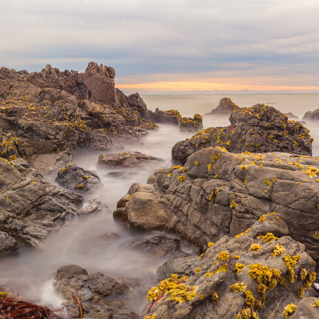 """rocky beachscape at Cape Palliser NZ"" stock image"