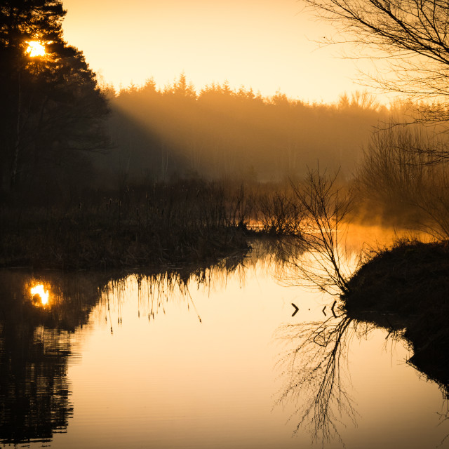 """""""Early one morning"""" stock image"""