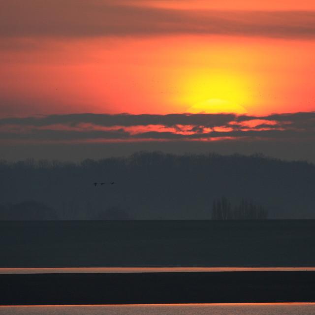 """""""Lac du Der zonsondergang; Lac du Der sunset"""" stock image"""