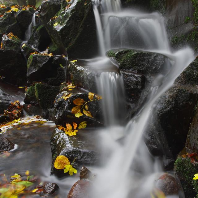 """Little cascade"" stock image"