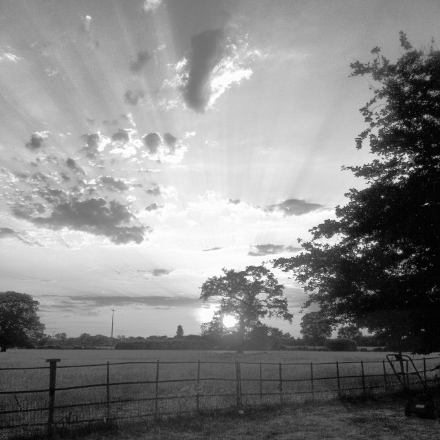 """Black and White Rays of Summer Sunset"" stock image"