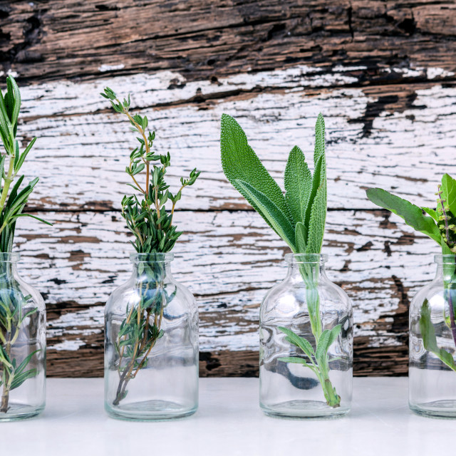 """""""Bottle of essential oil with herbs rosemary, sage,holy basil and thyme set..."""" stock image"""