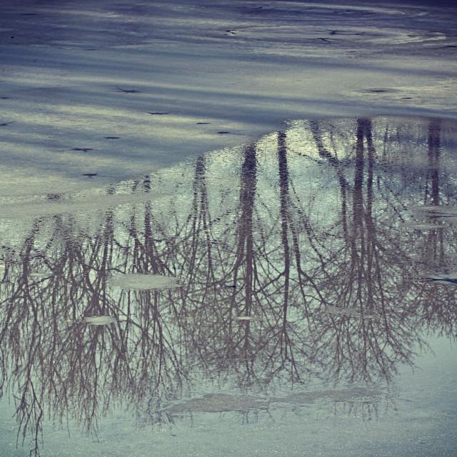 """""""winter, ice melting on lake surface with landscape reflection"""" stock image"""