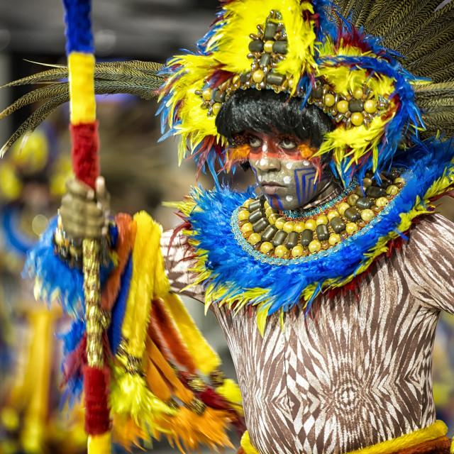 """""""Carnival Brazil Performer"""" stock image"""