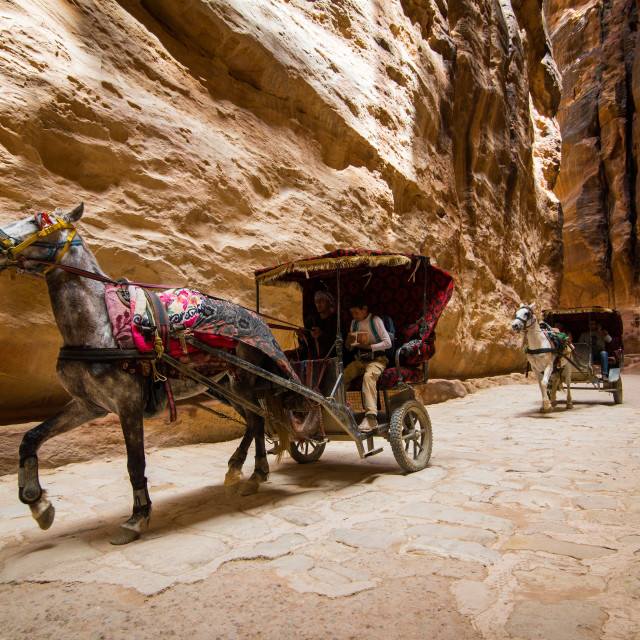 """Petra - Horses through the Siq"" stock image"