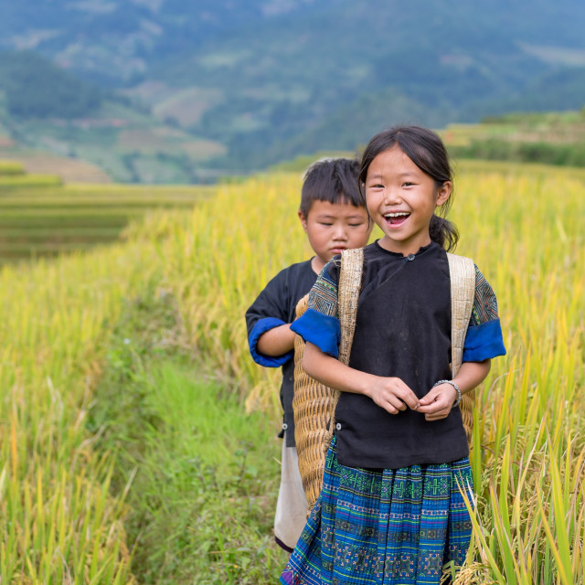 """Vietnamese Hmong children smiling in rice terrace river side"" stock image"