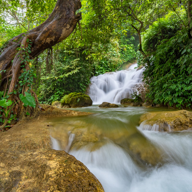 """""""Ban Gioc Waterfall on the Quy Xuan River"""" stock image"""
