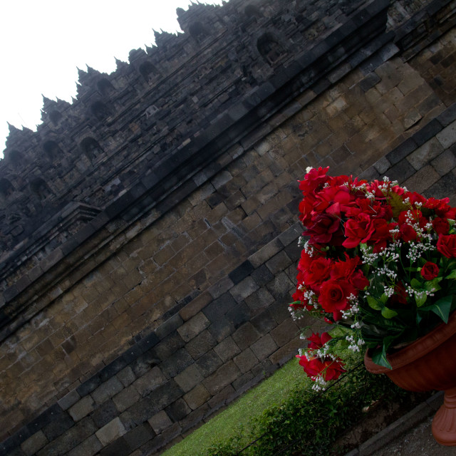 """Flowers at Borobudur"" stock image"