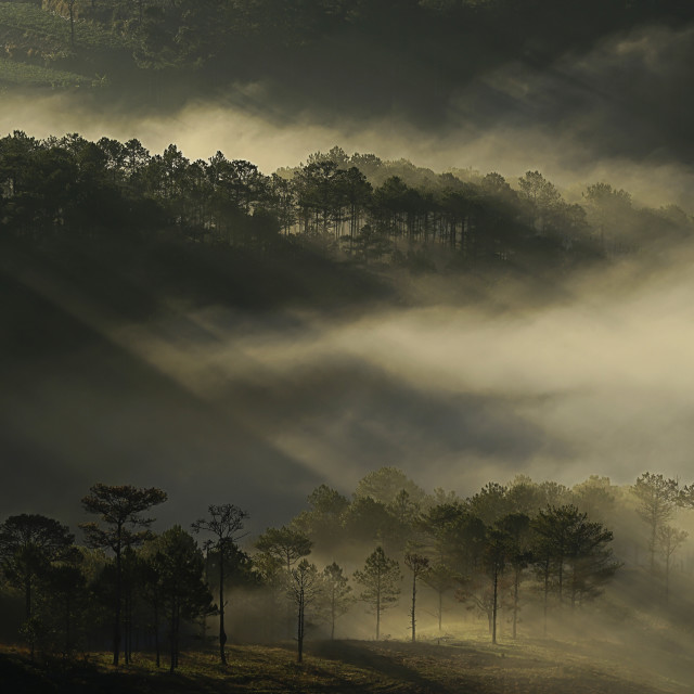 """""""Layers of light rays"""" stock image"""