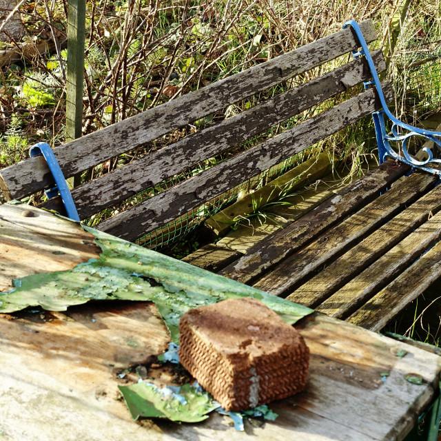 """""""Forgotten rustic garden bench"""" stock image"""