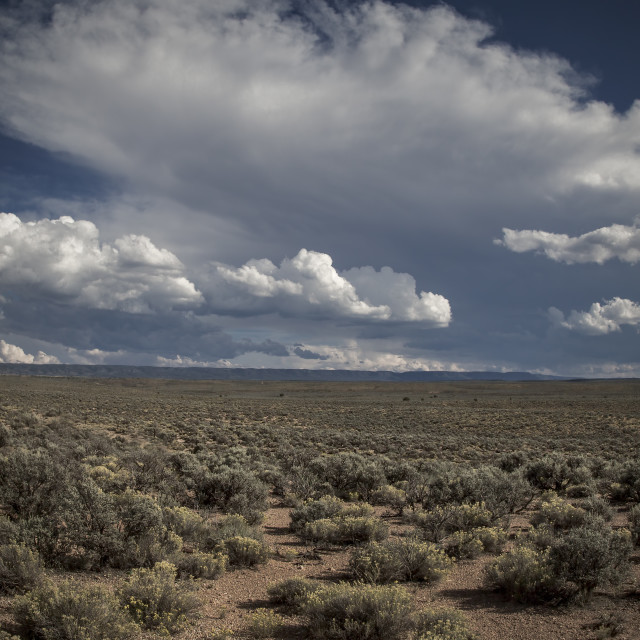 """Arizona Storm Clouds"" stock image"