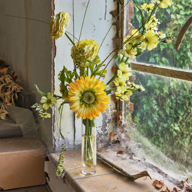 """The Window Sill"" stock image"