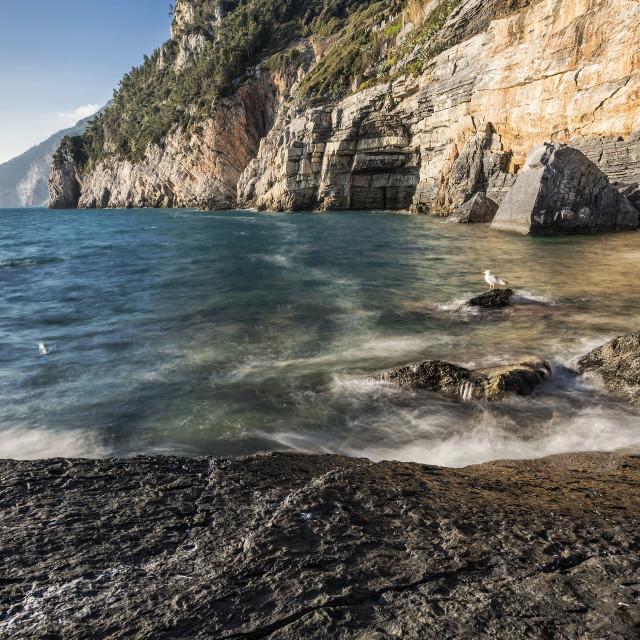 """The cliff of Portovenere"" stock image"