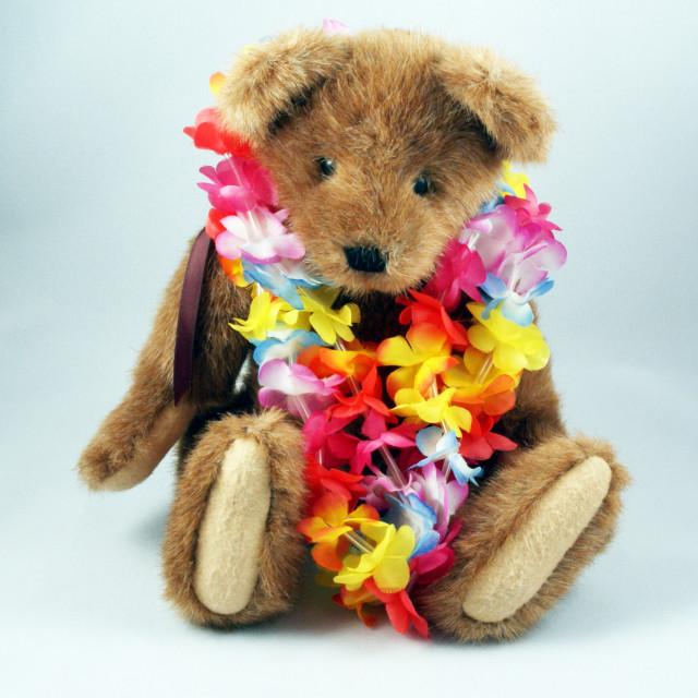 """Teddy bear."" stock image"