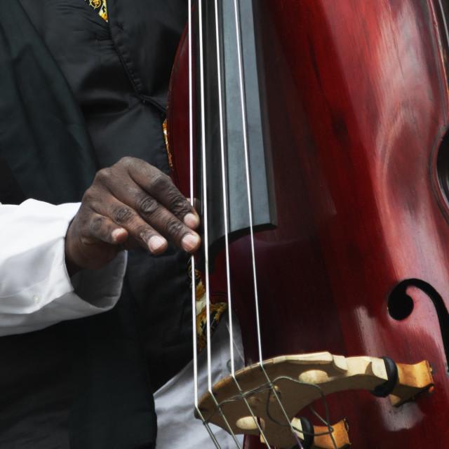 """Charnett Moffett Bass Virtuoso 3"" stock image"
