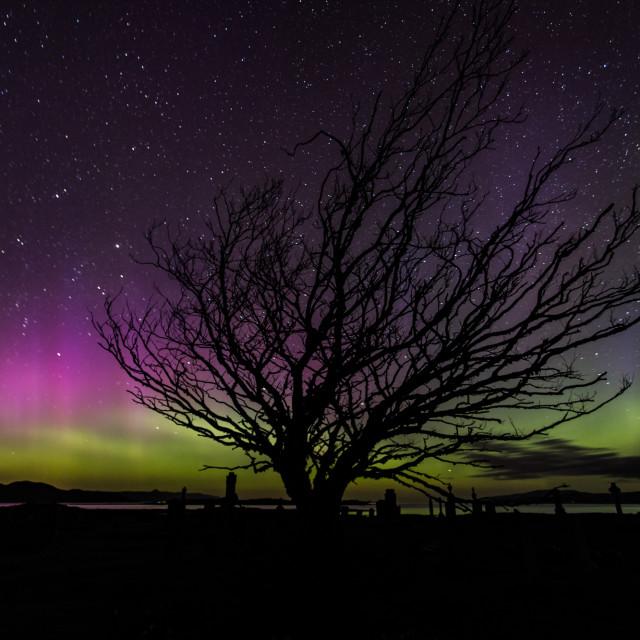 """Aurora borealis over the Isle of Skye"" stock image"