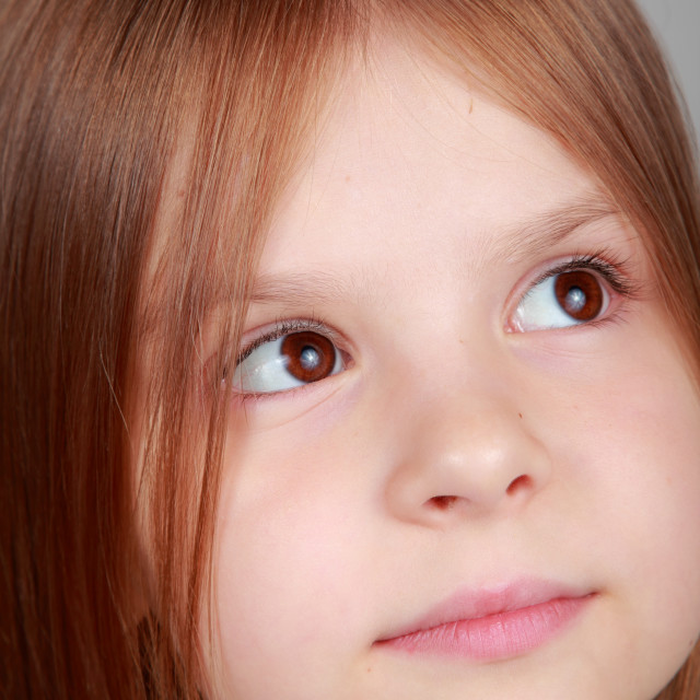 """""""Close-up portrait of a beautiful little girl with long brown hair on gray..."""" stock image"""