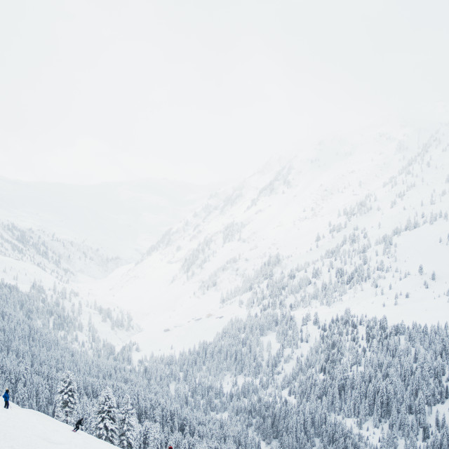 """""""White Skiing Paradise"""" stock image"""