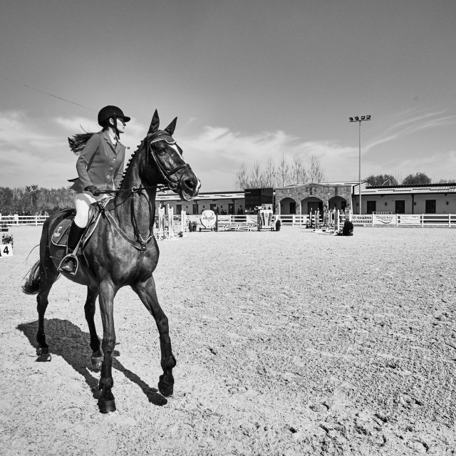 """""""Show jumping"""" stock image"""