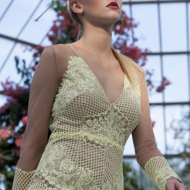 """""""Girl Model on Catwalk"""" stock image"""