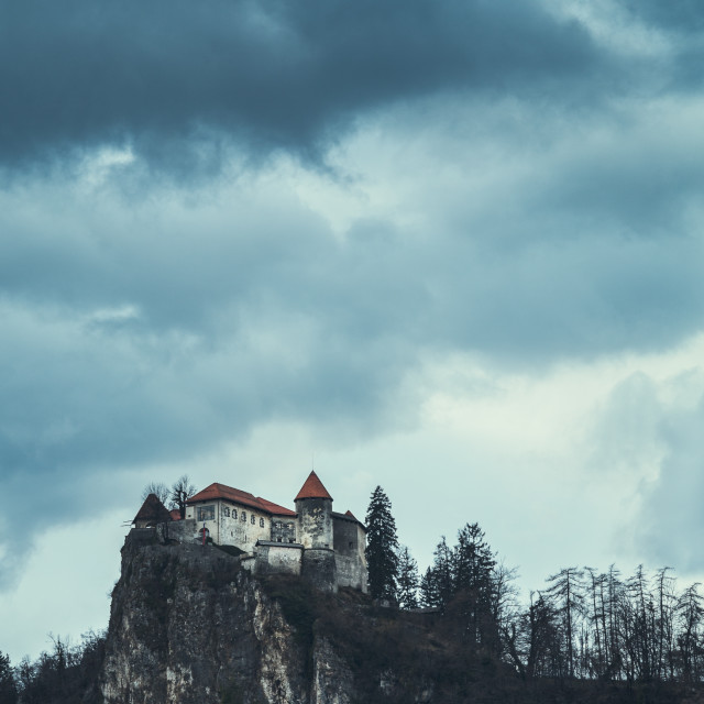 """Bled Castle"" stock image"
