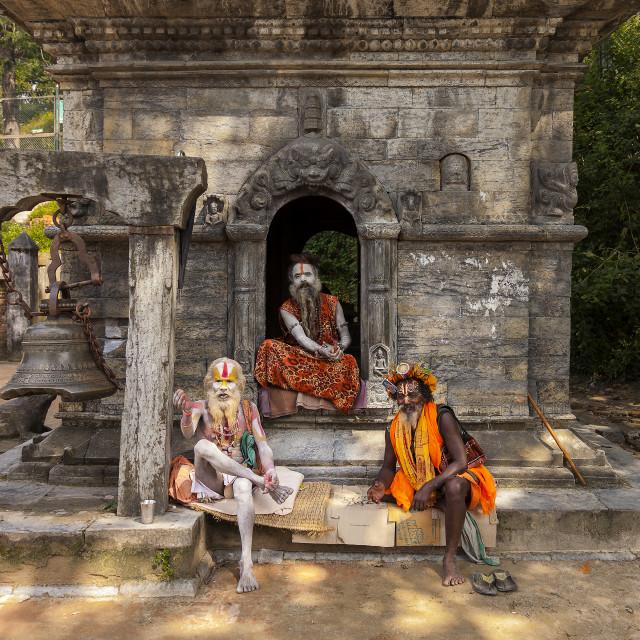 """Three religious Hindu men"" stock image"