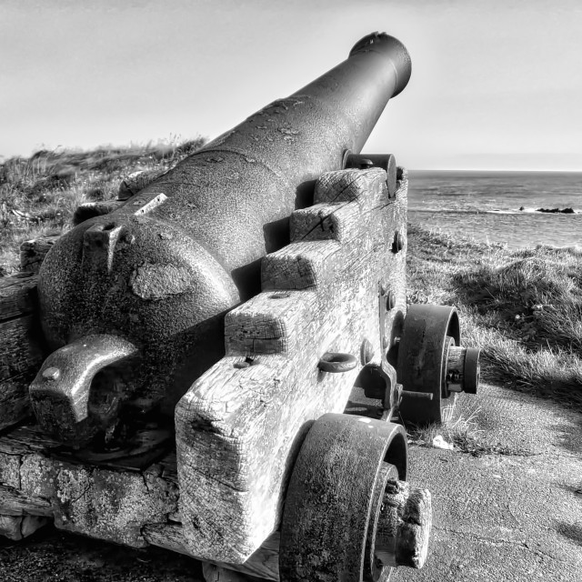 """Canon overlooking Eyemouth"" stock image"