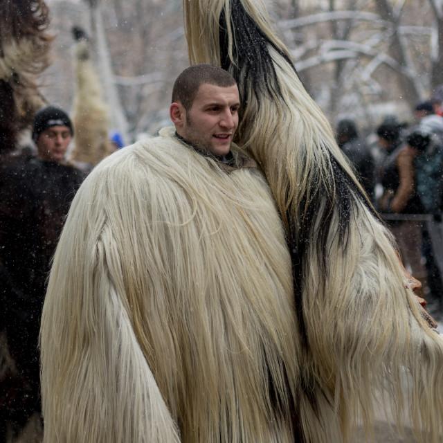 """My big white fur mask"" stock image"