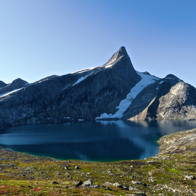 """""""Mountaintop in Norway"""" stock image"""