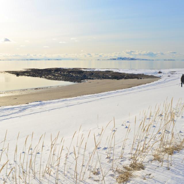 """Woman skiing beside the ocean"" stock image"