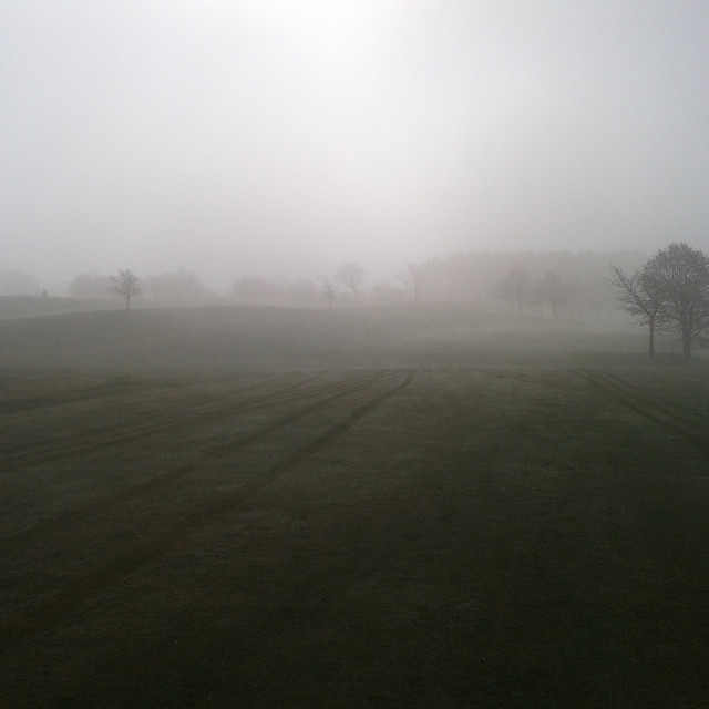 """Eerie morning on a golf course"" stock image"