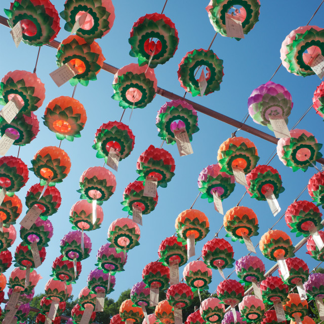 """Buddha's Birthday Lanterns"" stock image"