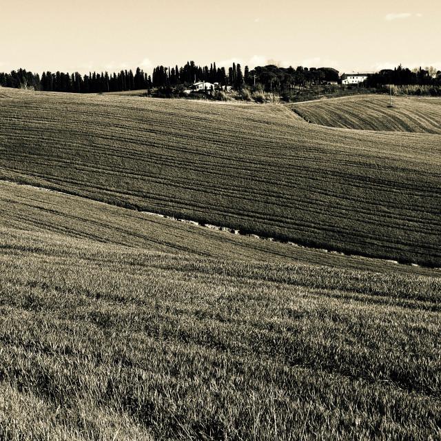 """campagna toscana"" stock image"