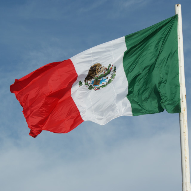 """""""Mexican flag."""" stock image"""