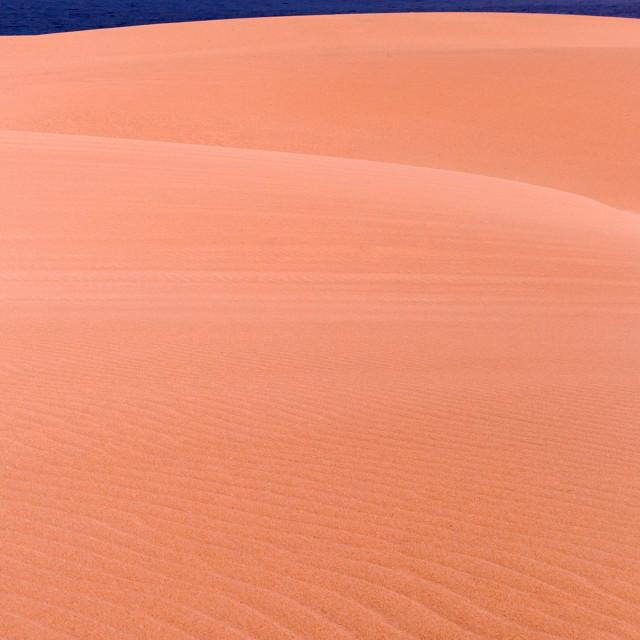 """Dune and sea"" stock image"