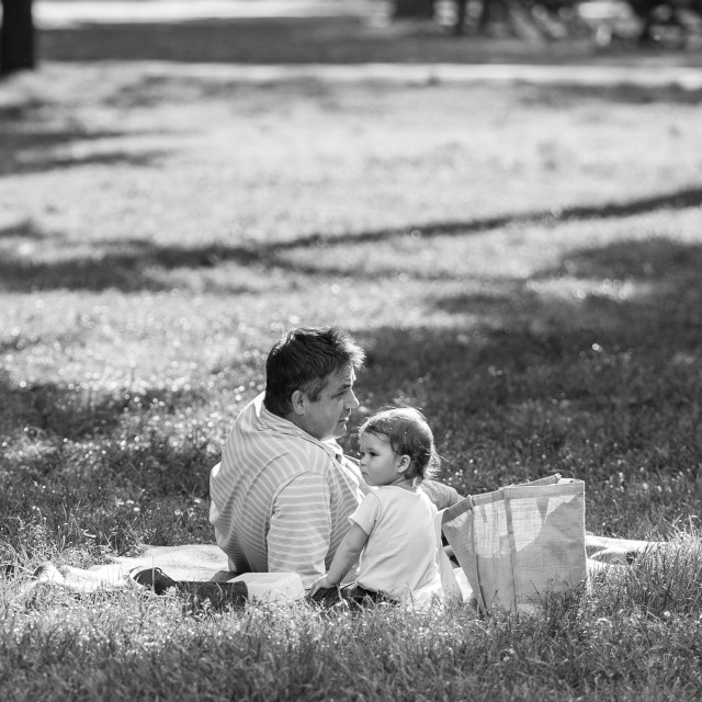 """Picnic with Daddy"" stock image"