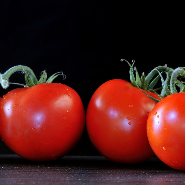 """Tomatoes."" stock image"