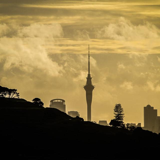 """Auckland Skyline New Zealand"" stock image"