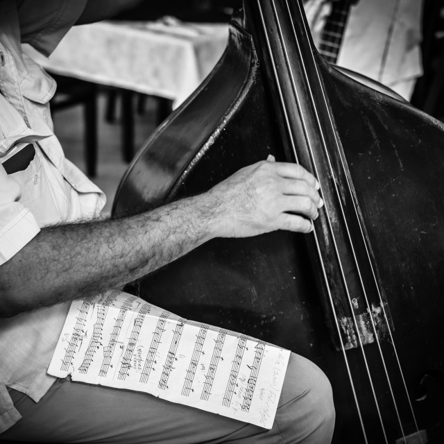 """Double Bass Player"" stock image"
