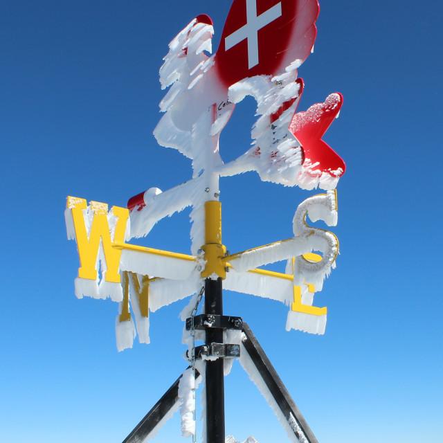 """""""Icy weather vane"""" stock image"""