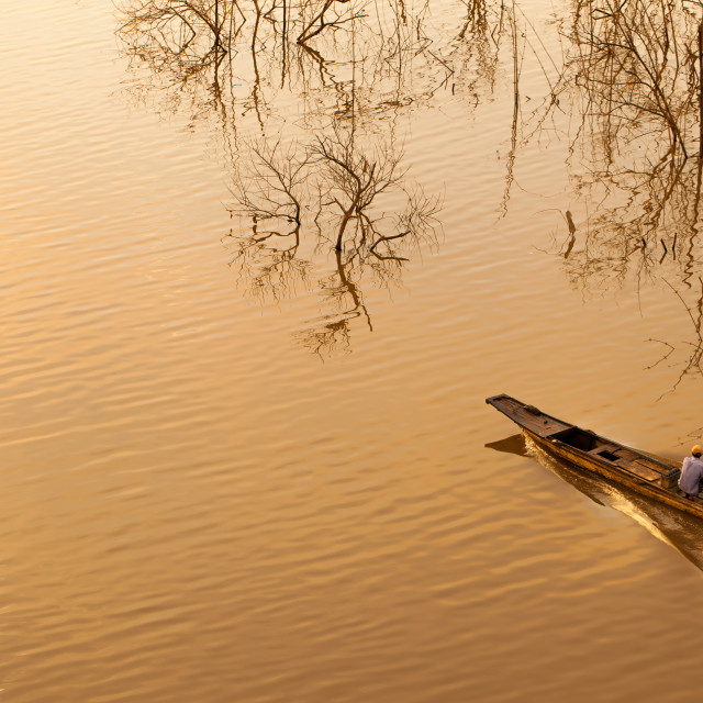 """""""Boat running in river with dead trees"""" stock image"""