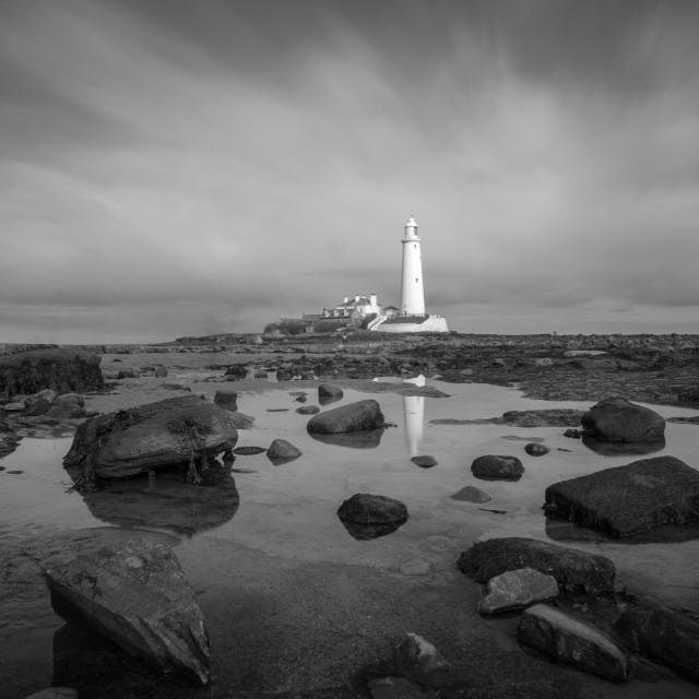 """""""St Marys lighthouse"""" stock image"""