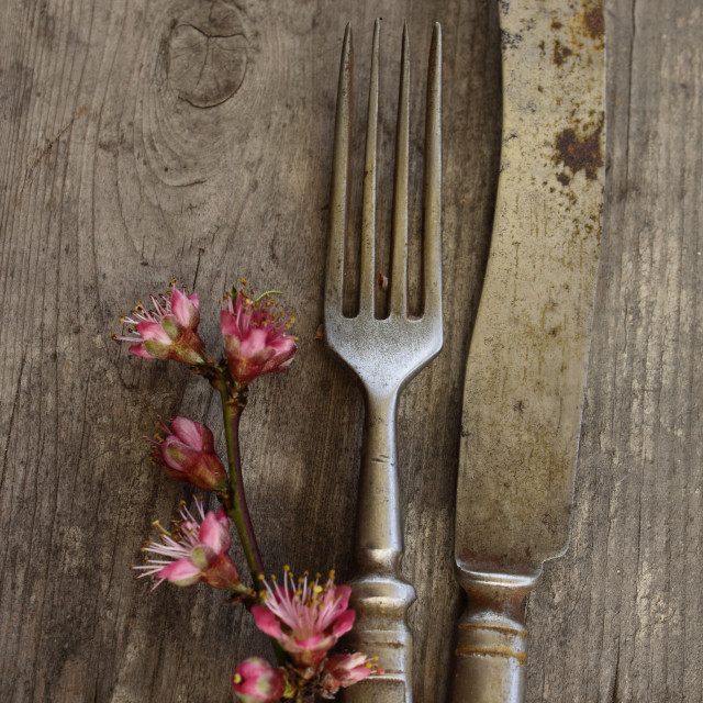 """Old flatware"" stock image"