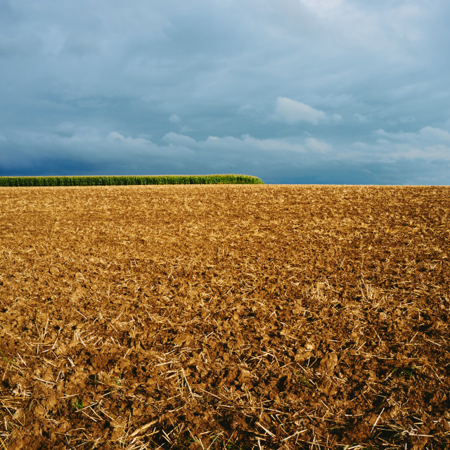 """Field before a storm"" stock image"