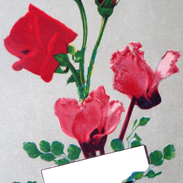 """old postcard for roses for all occasions"" stock image"