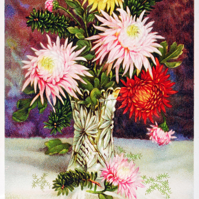 """old postcard with a bouquet of flowers to wish happy feast"" stock image"