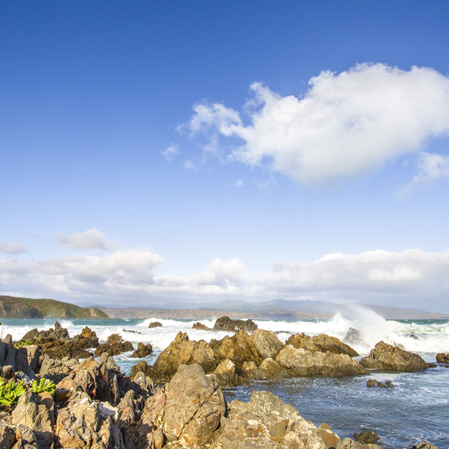 """Rugged Coastline around Wellington, New Zealand"" stock image"