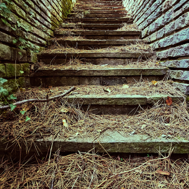 """Old stairs"" stock image"