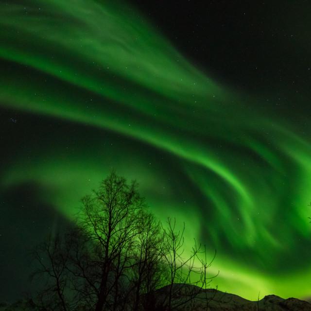 """Aurora storm"" stock image"
